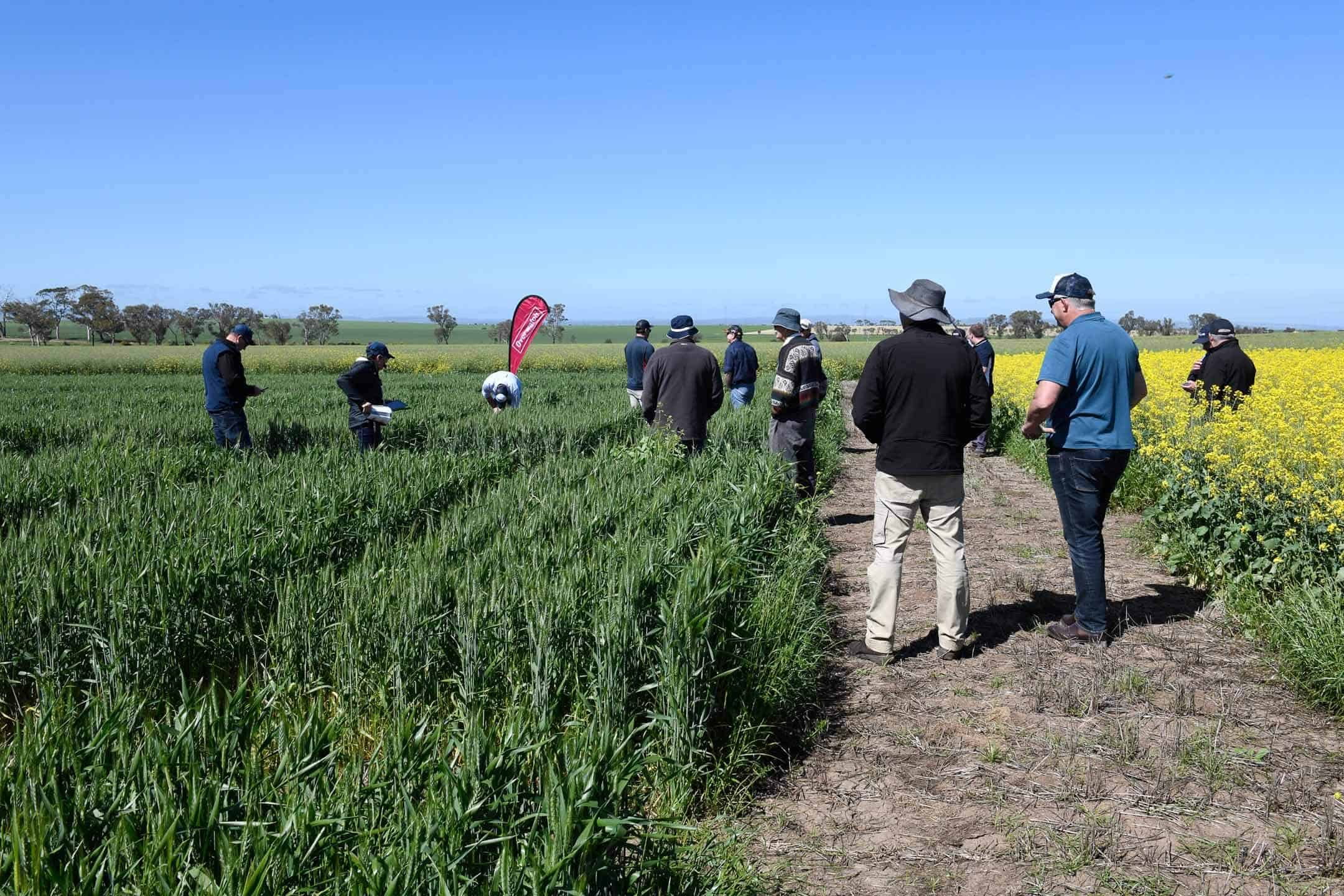 2020 Roseworthy FMC Overwatch site third visit
